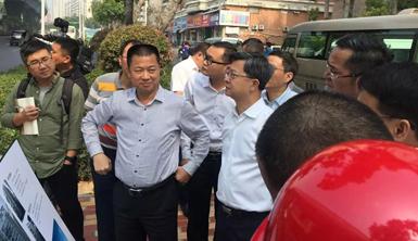 厦门市委副书记、市长庄稼汉、副市长张毅恭等市领导一行莅临莱尔斯特项目现场视察指导工作