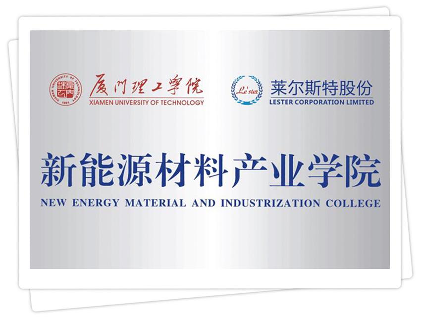 莱尔斯特新能源材料产业学院